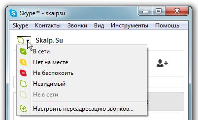 Значок статуса Скайп в главной окне программы